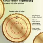Värdet på den illegala handeln med virke i förhållande till annan handel